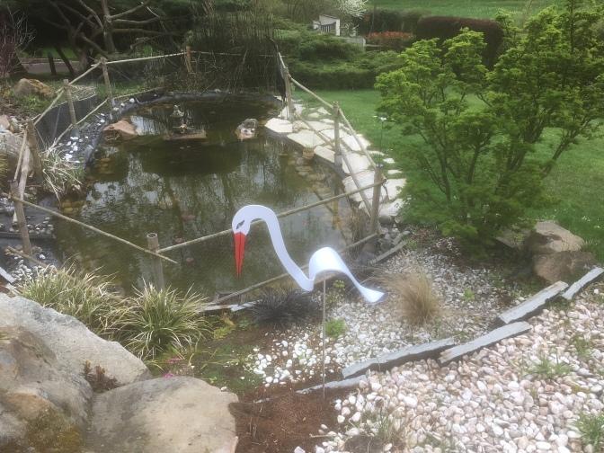 Cigogne et bassin