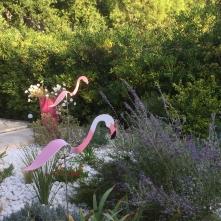 Jardin Provencal
